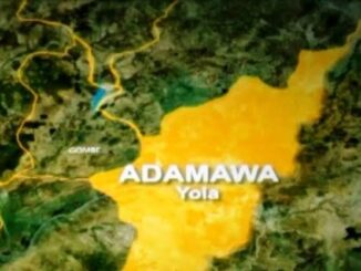 Adamawa College of Education introduces 6 degree courses 1